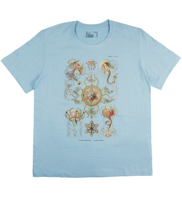 t-shirt-marine-biology-organic