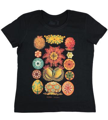 t-shirt-organic-ascidiae