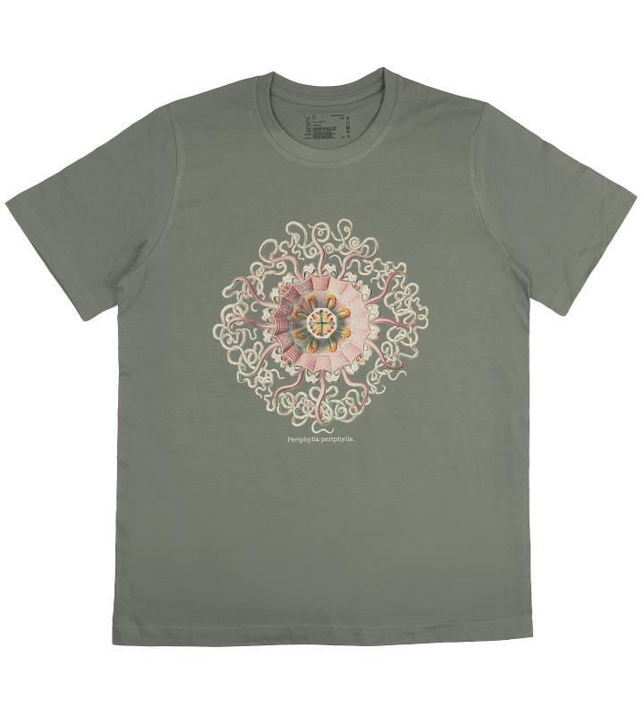 Periphylla – Haeckel bio tričko pánské – LifeForms 36b1f20751