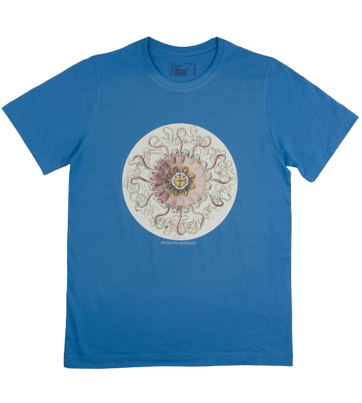 tričko modré, bio, medúza