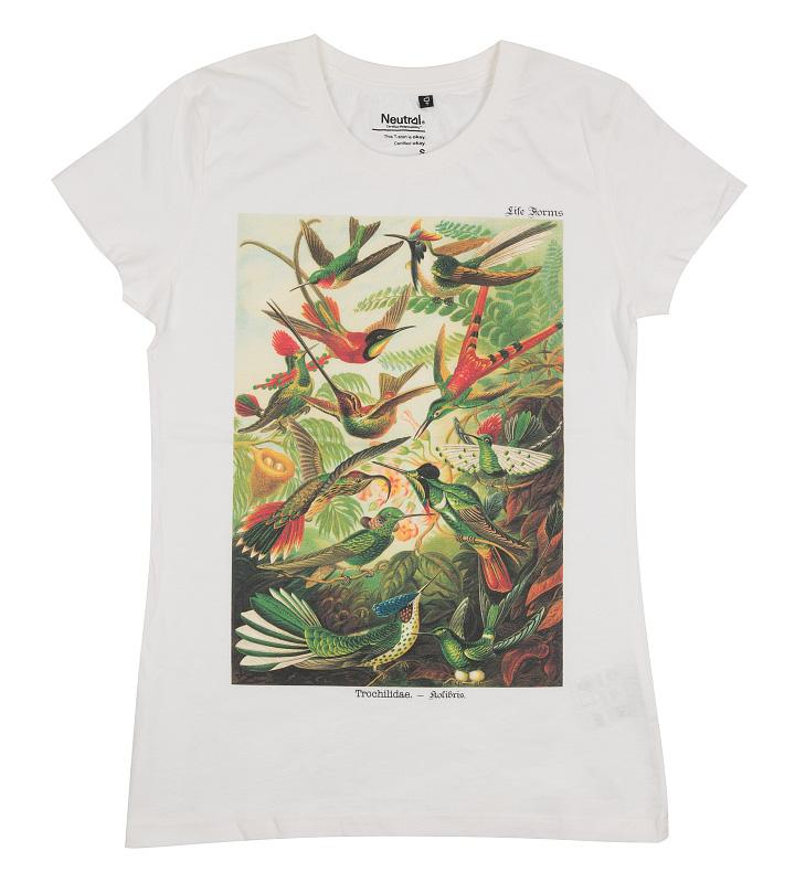 triko s kolibříky