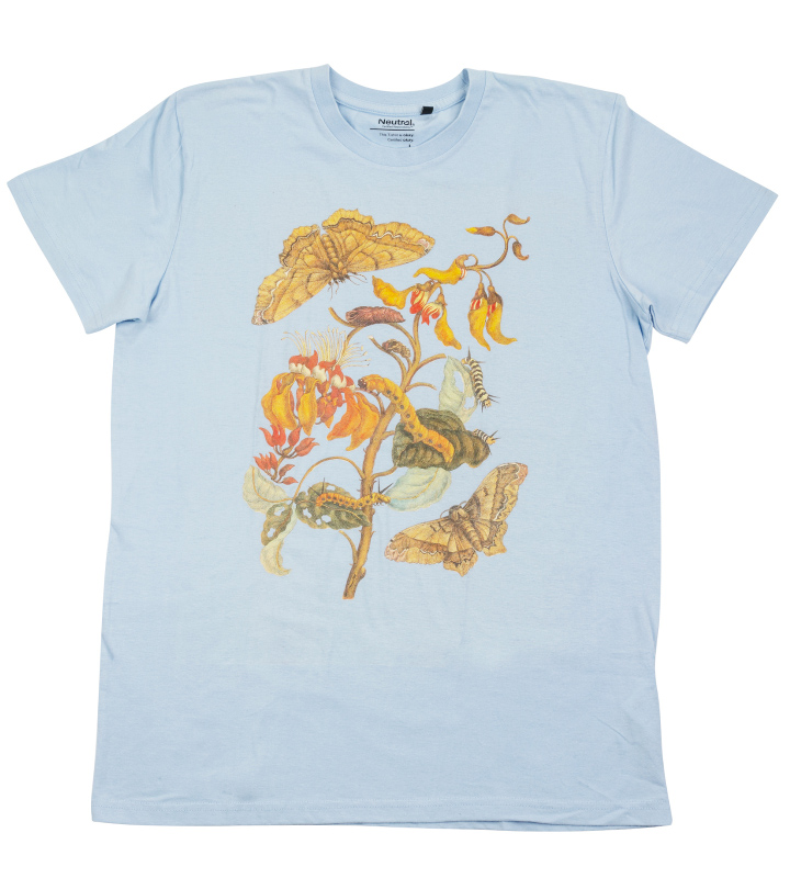 motýl housenka, tričko